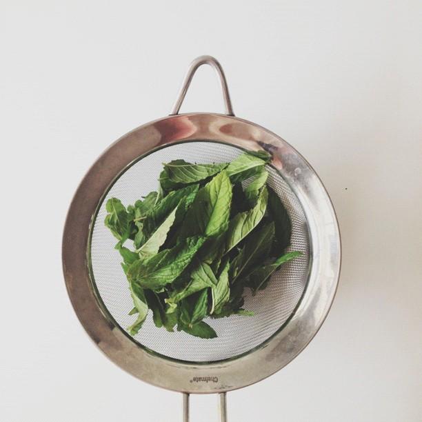 Amerrymishap-instagram-spinach