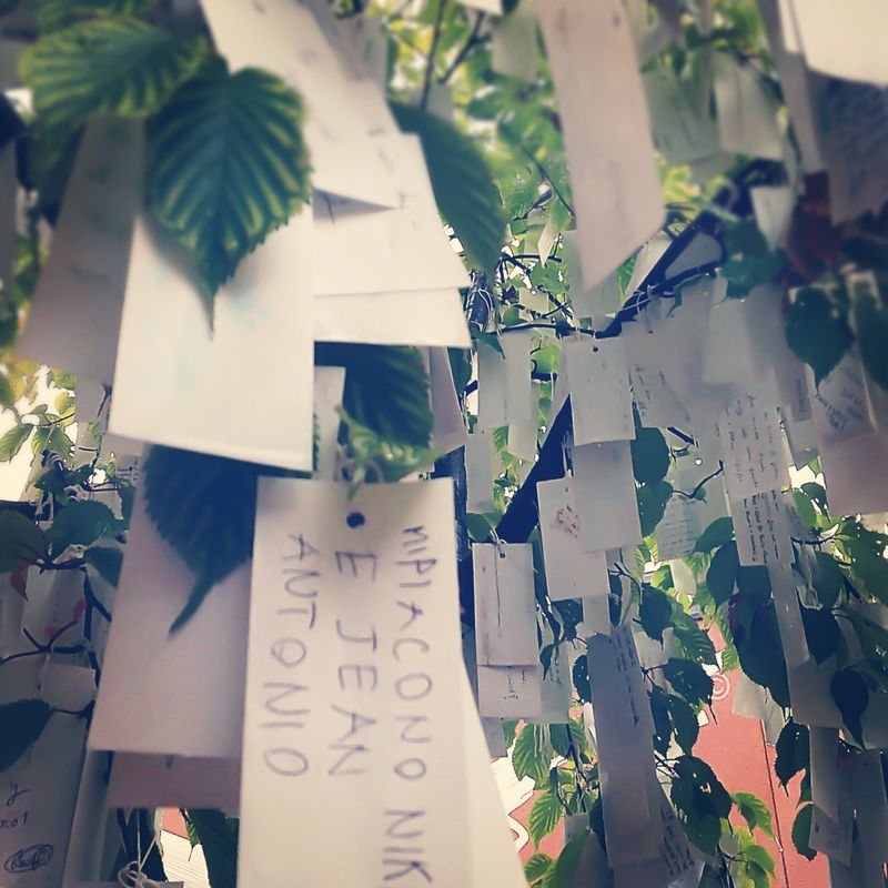 Wishing-tree-Stockholm